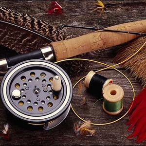 Охотничьи и рыболовные магазины Лениградской